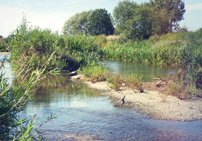 Fluss mit Flussinsel