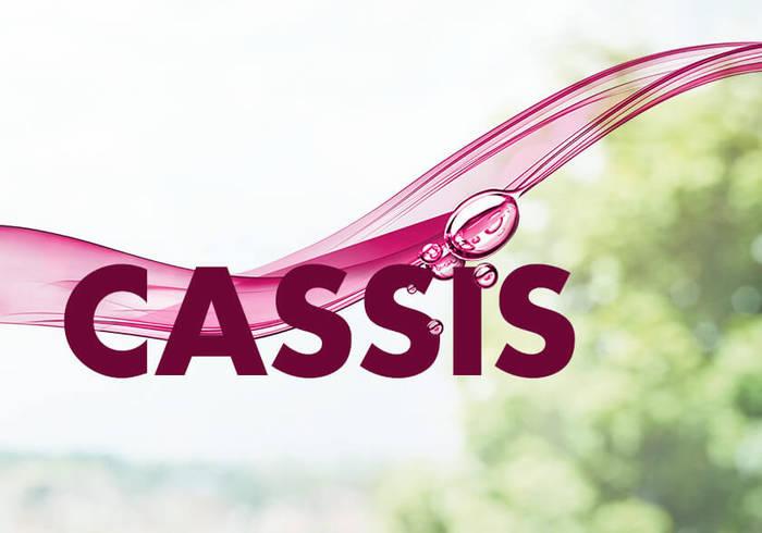 Elisabethen Quelle Pur und Fruchtig Cassis