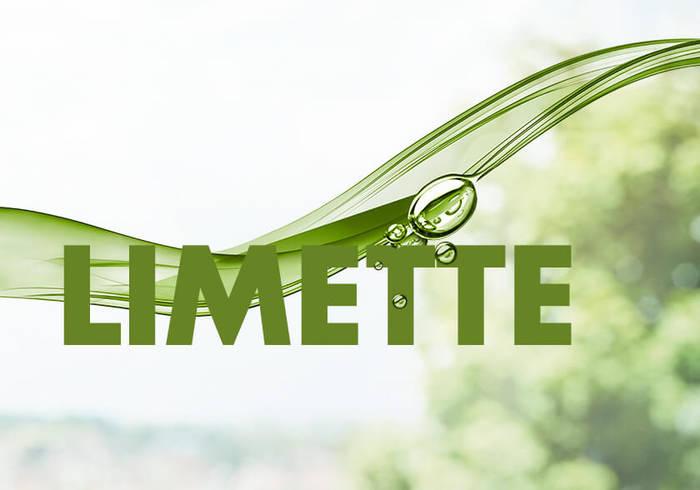 Elisabethen Quelle Pur & Fruchtig Limette